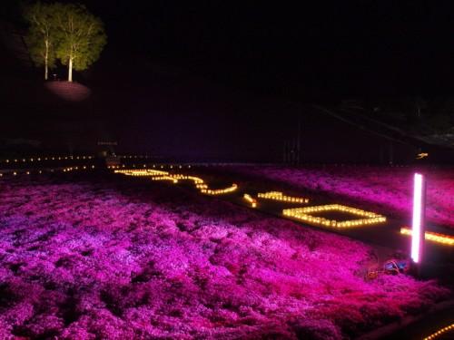 芝桜公園2.jpg