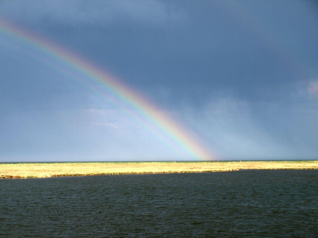 結構虹が濃く出ています。本当に虹の足ですね。 2008年5月10日 (土... 今噂の別海町白鳥